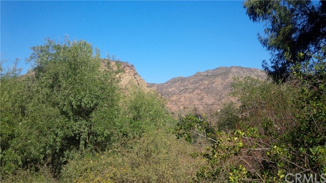 29086 Hill Top, Modjeska Canyon, CA 92676