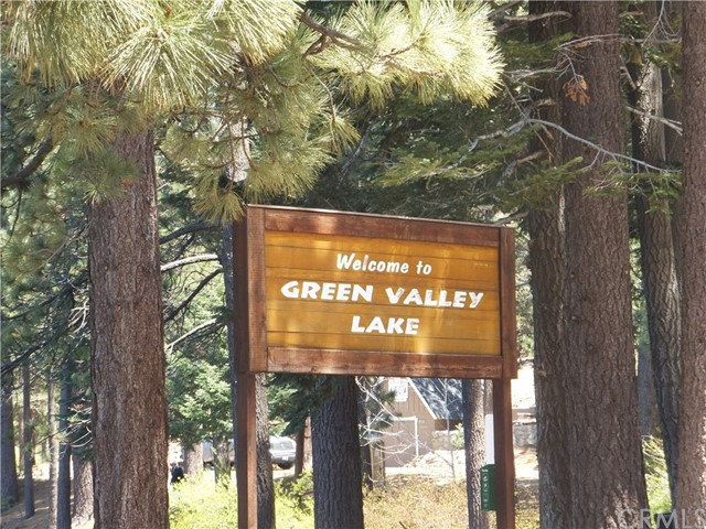 33385 Robin Dr, Green Valley Lake, CA 92341 Photo 22