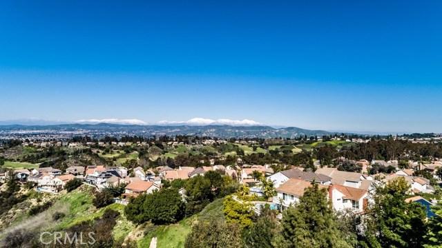 6455 E Oakview Lane, Anaheim Hills, CA 92807