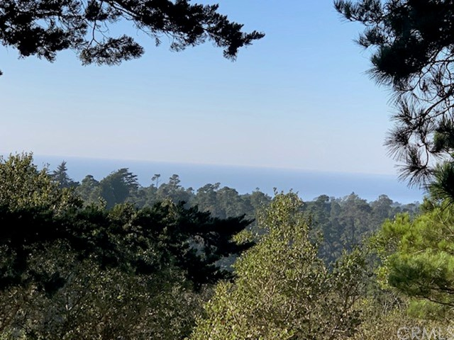 0 Richard Av, Cambria, CA 93428 Photo 2