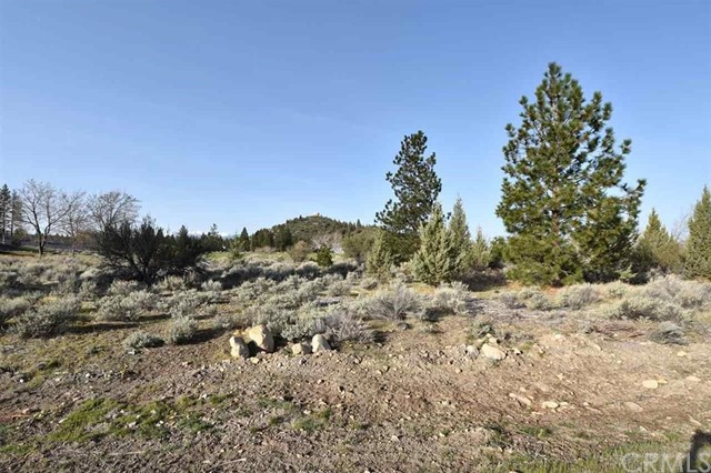0 Lot 154 Tony Lema Drive, Weed, CA 96094