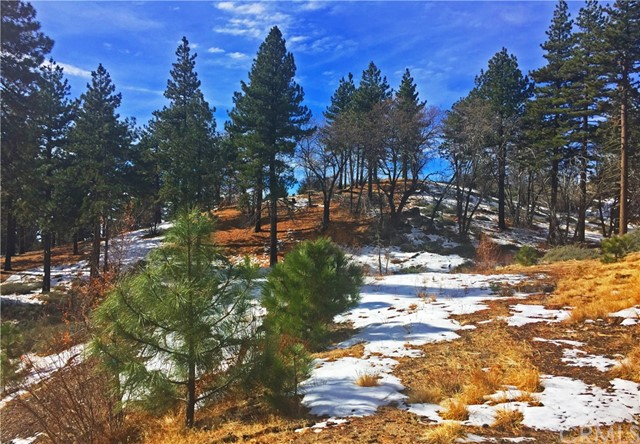 32274 N Green Valley Lake Rd, Green Valley Lake, CA 92382 Photo 5