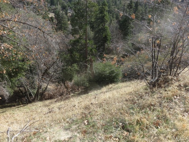 0 Piney, Cedar Glen, CA 92321