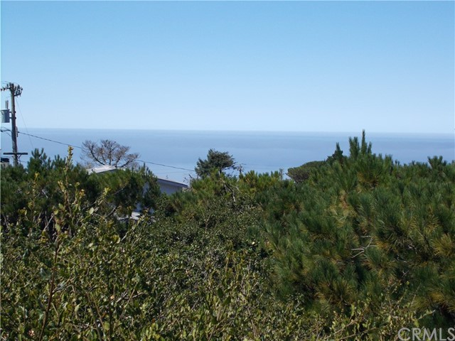 1721 Benson Av, Cambria, CA 93428 Photo 48