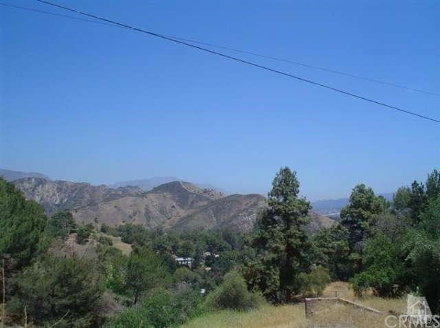 12021 Inspiration, Kagel Canyon, CA 91342 Photo 21