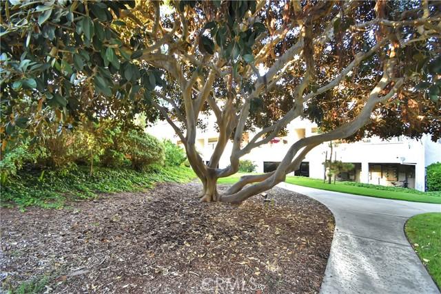 35. 17172 Abalone Lane #104 Huntington Beach, CA 92649