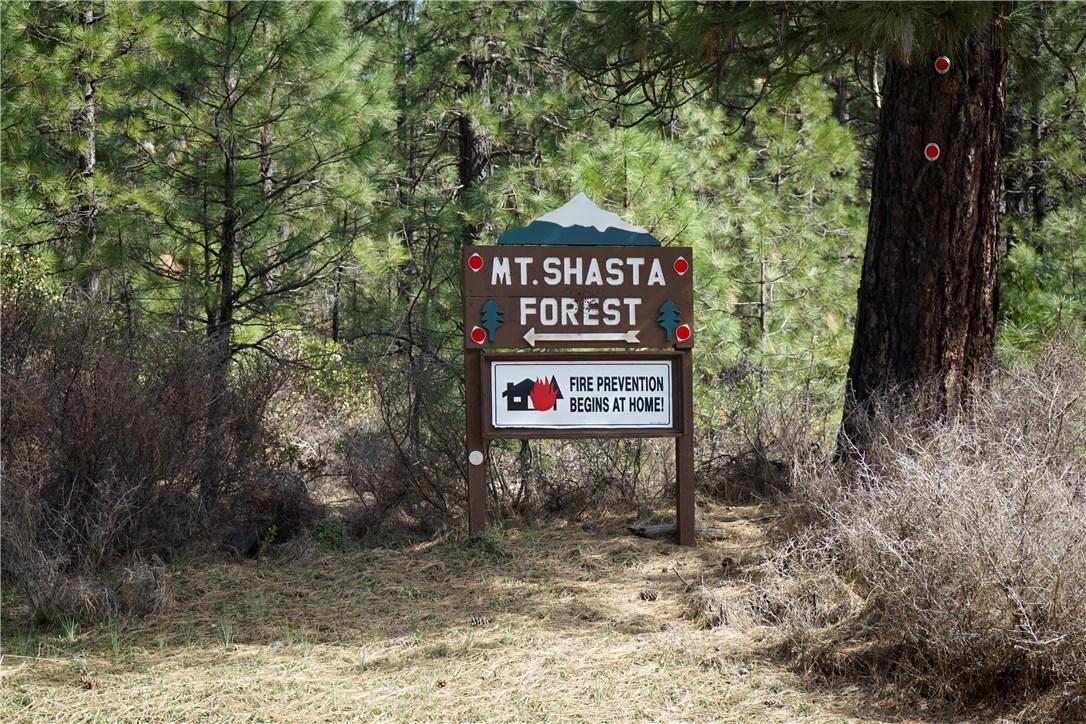 8943 Shasta, McCloud, CA 96057