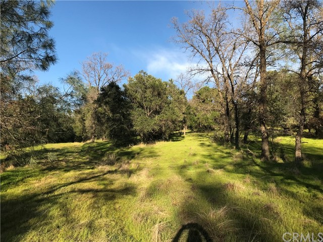0 Pleasant View Ln, Oroville, CA 95915