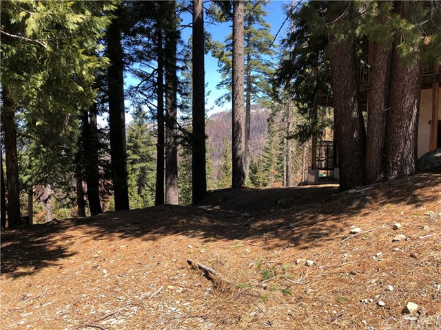 7301 Yosemite Park Way, Yosemite, CA 95389