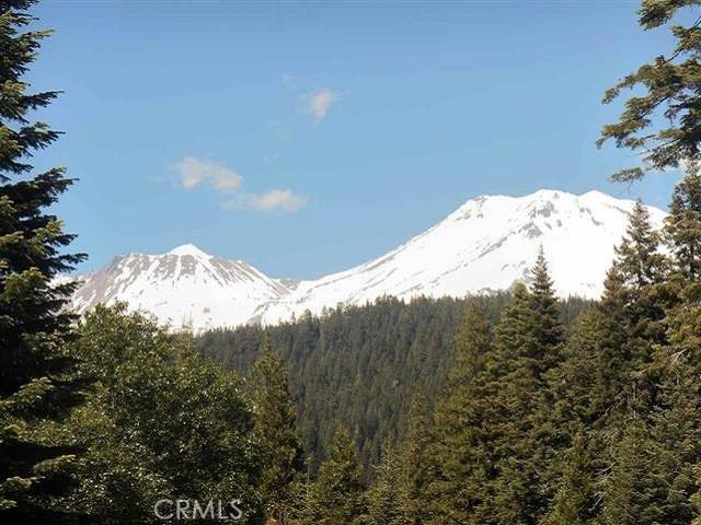 11 Cold Creek Circle, Mount Shasta, CA 96067
