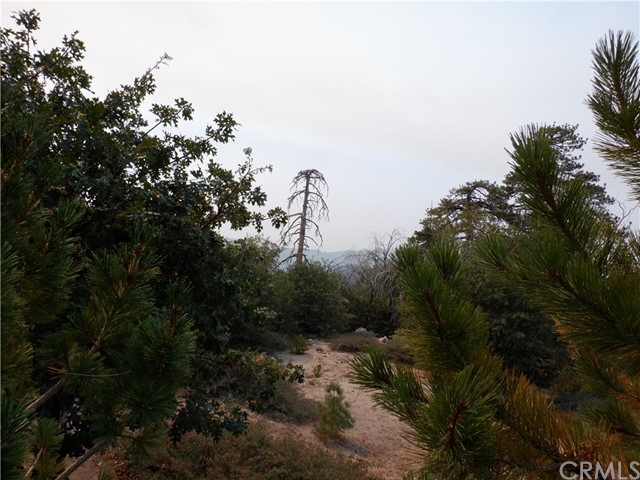 32966 Canyon Dr, Green Valley Lake, CA 92341 Photo 8