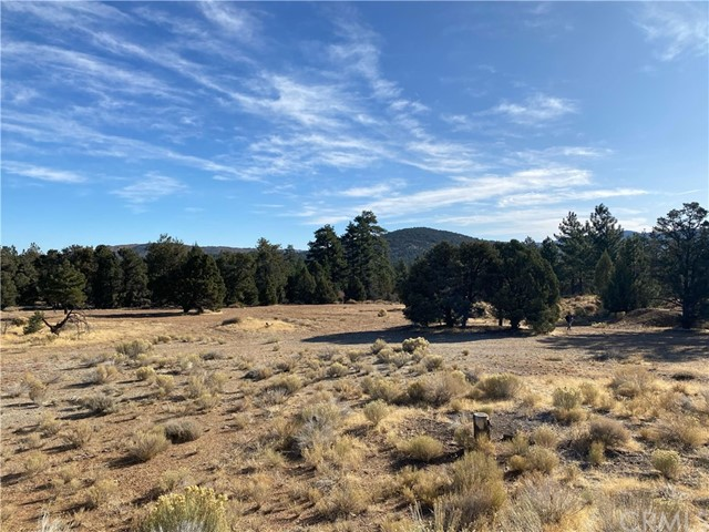 Investors Dream. 3 parcels totaling 15.1 acres being sold together in this rare opportunity. Located in the peaceful Big Bear neighborhoods of Valley View and Maple Ridge close to schools and parks. These properties have not been assigned an address by County of San Bernardino.Investors Dream. 3 parcels totaling 15.1 acres being sold together in this rare opportunity. Located in the peaceful Big Bear neighborhoods of Valley View and Maple Ridge close to schools and parks. These properties have not been assigned an address by County of San Bernardino.