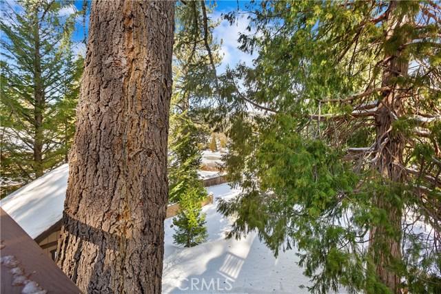 2348 Pine Dr, Arrowbear, CA 92382 Photo 23