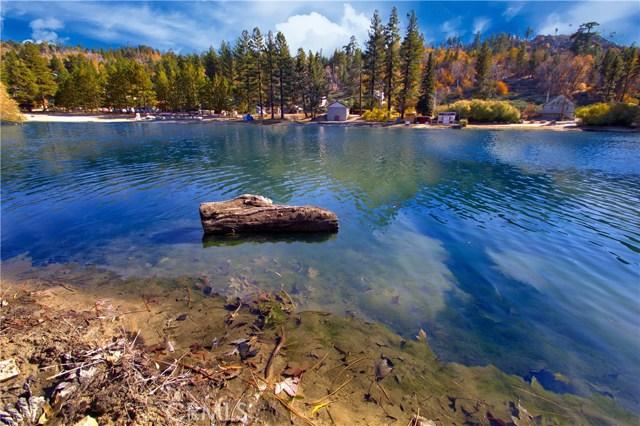 33294 Iris Dr, Green Valley Lake, CA 92341 Photo 23