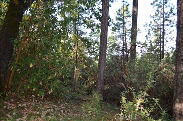 0 Pine Tree Lane, Berry Creek, CA 95916