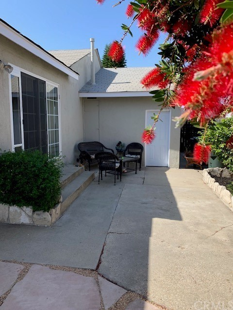 Great Back Yard with Mature Fruit Trees