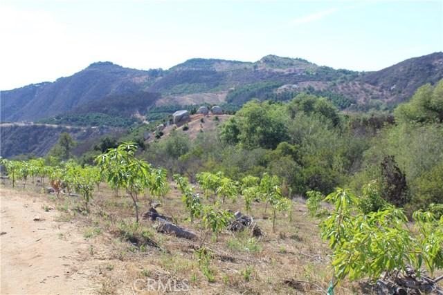 44 El Calamar Rd, Temecula, CA 92590 Photo 6