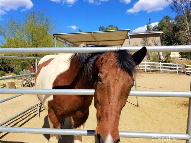 40840 Via Los Altos, Temecula, CA 92591 Photo 46