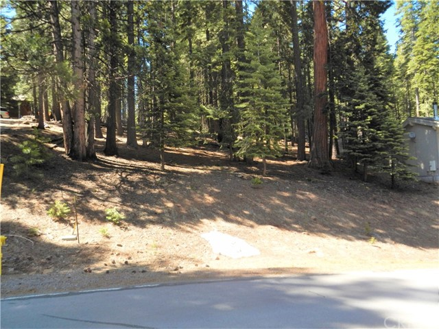 667 E Mountain Ridge Road, Lake Almanor, CA 96137