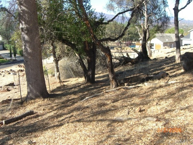 18315 Grizzly Ct, Hidden Valley Lake, CA 95467 Photo 8