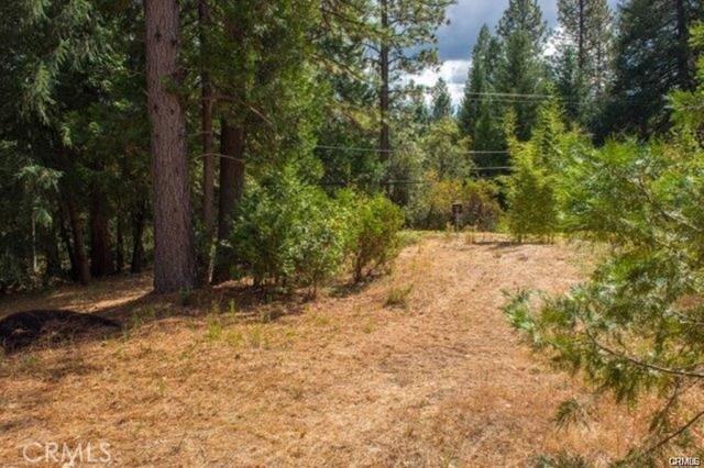 4891 Schott Rd, Forest Ranch, CA 95942 Photo 30