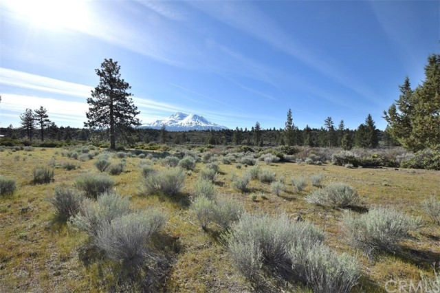 0 10 acres Big Springs Road, Weed, CA 96094