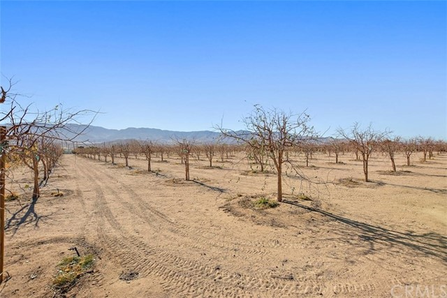 34738 Old Woman Springs Rd, Lucerne Valley, CA 92356 Photo 45