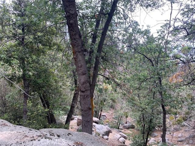 0 Tank Road, Arrowbear, CA 92382 Photo 5