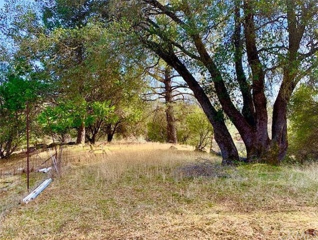 33625 Road 221, North Fork, CA 93643 Photo 30