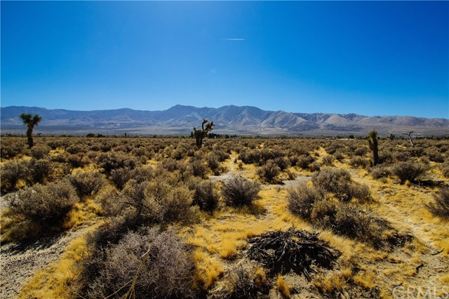 0 Akron, Lucerne Valley, CA  Photo 1