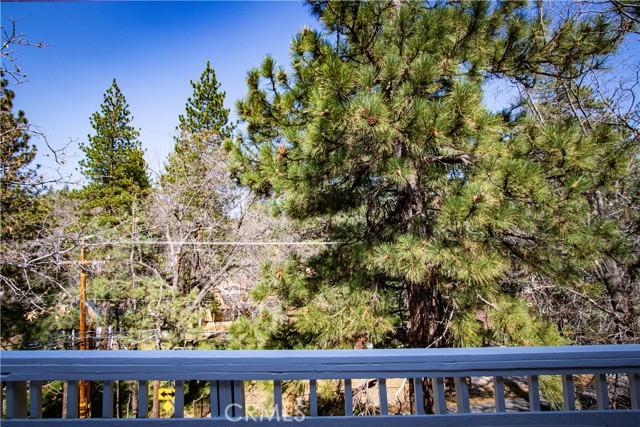 2294 Deep Creek Dr, Arrowbear, CA 92382 Photo 30