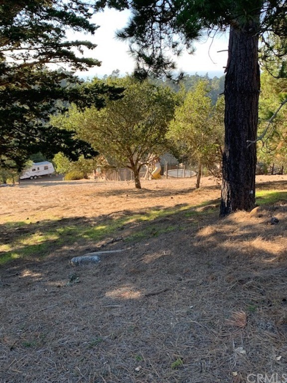 0 Richard Av, Cambria, CA 93428 Photo 3