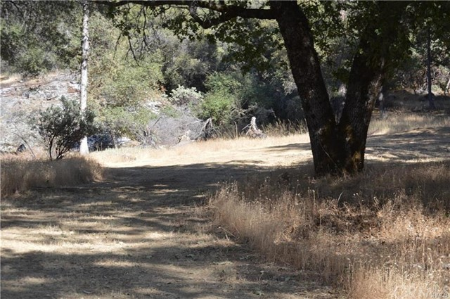 4 Woodcrest Drive, Oakhurst, CA 93644