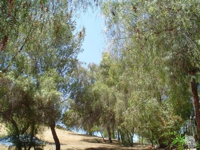 12021 Inspiration, Kagel Canyon, CA 91342 Photo 9