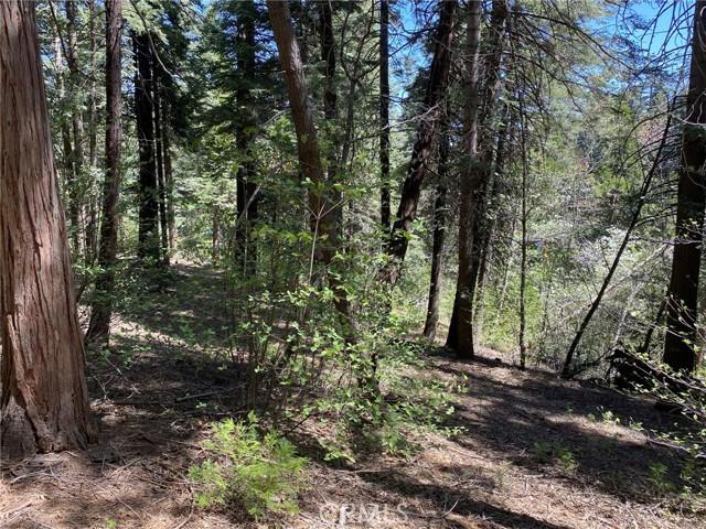 865 Maple, Lake Arrowhead, CA 92385
