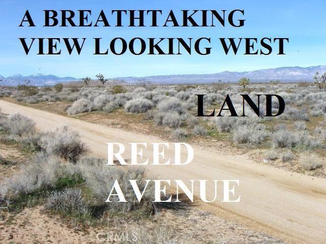 0 REED Avenue E, Mojave, CA 93501