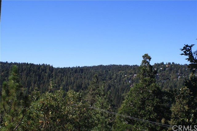 375 Pioneer Road, Lake Arrowhead, CA 92352