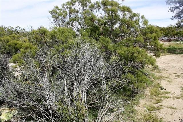 0 Palm Canyon, Pinyon Pines, CA 92564