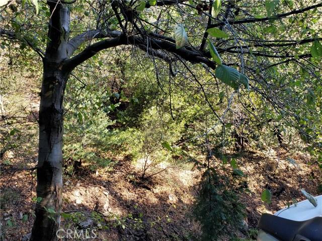 0 Waters Drive, Cedarpines Park, CA 92322