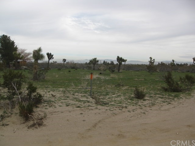 12000 Bellflower, Victorville, California, ,Land,For Sale,Bellflower,PV19020961