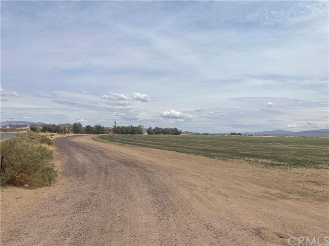 48001 Silver Valley Rd, Newberry Springs, CA 92365 Photo