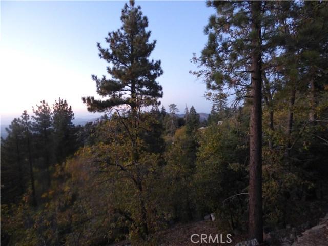 33162 Holcomb Creek, Green Valley Lake, CA 92341 Photo 19