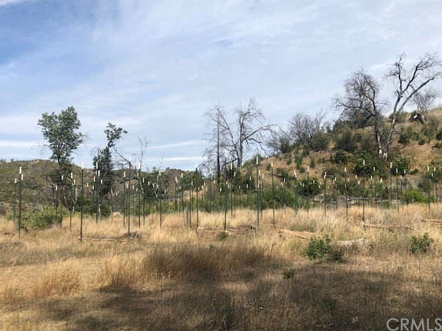 14515 Big Canyon Rd, Lower Lake, CA 95457 Photo 5