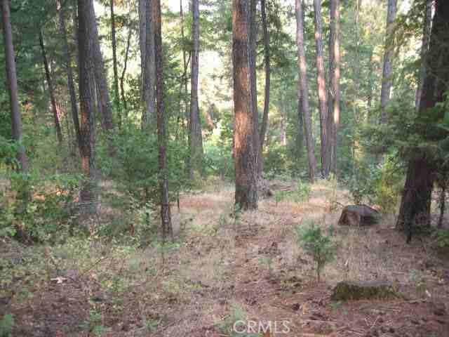 0 sandcreek, Berry Creek, CA 95916