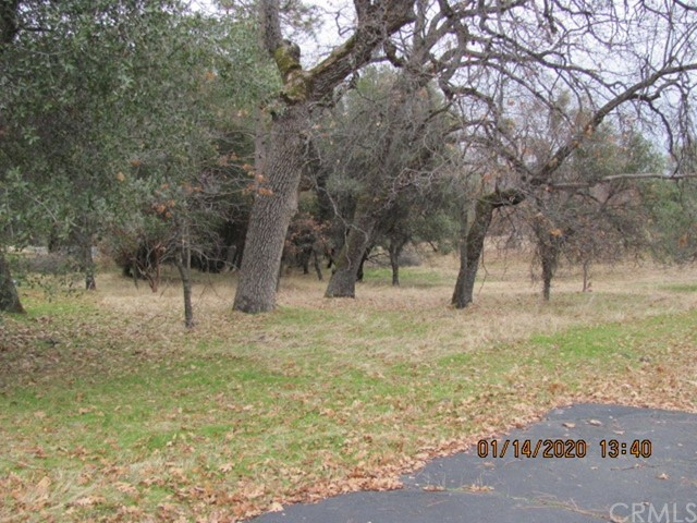 8 Blackberry Trail, North Fork, CA 93643 Photo 2