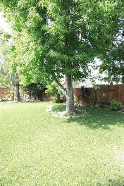 7751 Quitasol St, Carlsbad, CA 92009 Photo 12