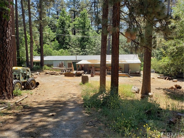54121 Pine Crest Avenue, Idyllwild, CA 92549