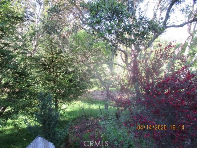 2525 Romney Dr, Cambria, CA 93428 Photo 18