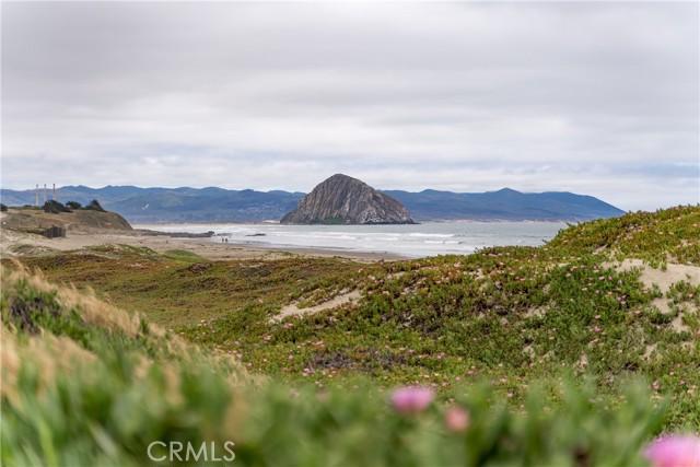 3263 Ocean Bl, Cayucos, CA 93430 Photo 21