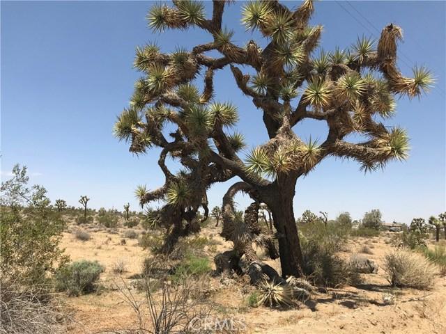 0 yucca mesa, Yucca Valley, CA 92284